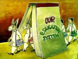 Donkeys of education